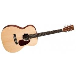 000X1AE - Elektro Akustik Gitar