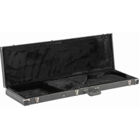 Array Bass - Hard Case