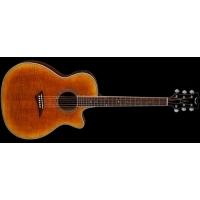 Exotica Flame Maple - Elektro Akustik - Tiger Eye Satin