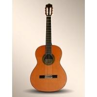 10P Klasik Gitar