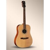 W-100 Akustik Gitar