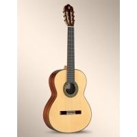 5Fp Flamenko Gitar
