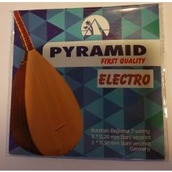 Premium Elektro Saz Teli Takımı