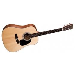 D1GT - Elektro Akustik Gitar