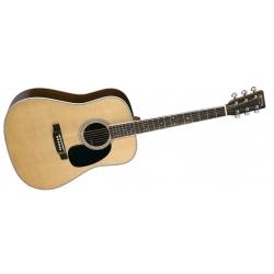 D35 - Akustik Gitar