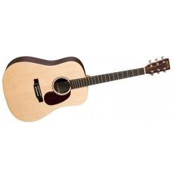 DX1RAE - Elektro Akustik Gitar