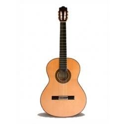 5F Flamenko Gitar