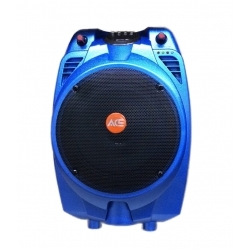 PAZ67AB - 30 Watt Taşınabilir Şarjlı Amplifikatör (Mavi)