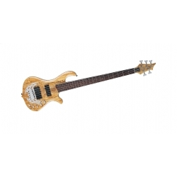 Array Limited - 5 Telli Bass Gitar - Spalted Maple