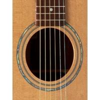 W-300 Akustik Gitar