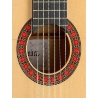 10Fc Flamenko Gitar