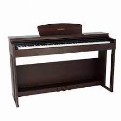 DP-250 RW - Dijital Piyano (Rosewood)