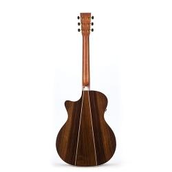 GPCPA2 - Elektro Akustik Gitar