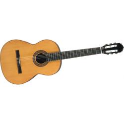 C1CEDAR - Manuel Rodrigez Masif Klasik Gitar