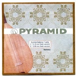 Pyramid Saz Teli 0.18